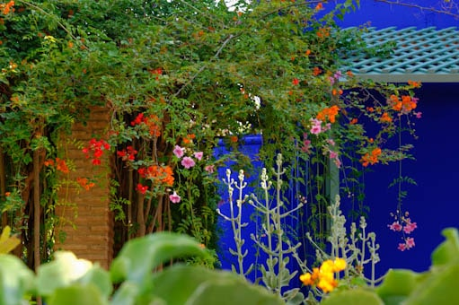 carnets de voyages le jardin majorelle marrakech. Black Bedroom Furniture Sets. Home Design Ideas