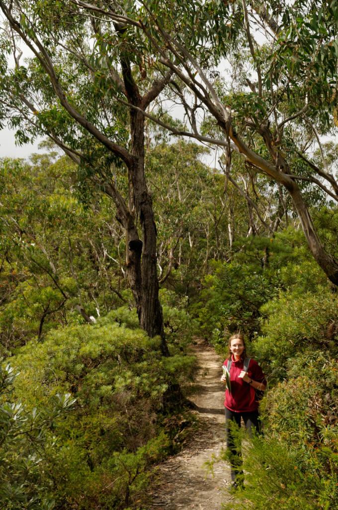 Préparer ses randonnées en Australie