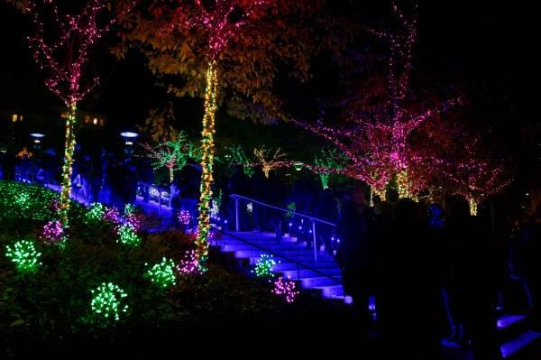 Jardin lumineux de la Montée de la Grande Côte
