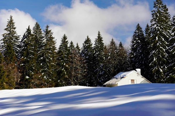 Randonnée raquettes dans le Haut Doubs  Photo : Nicolas Monnot