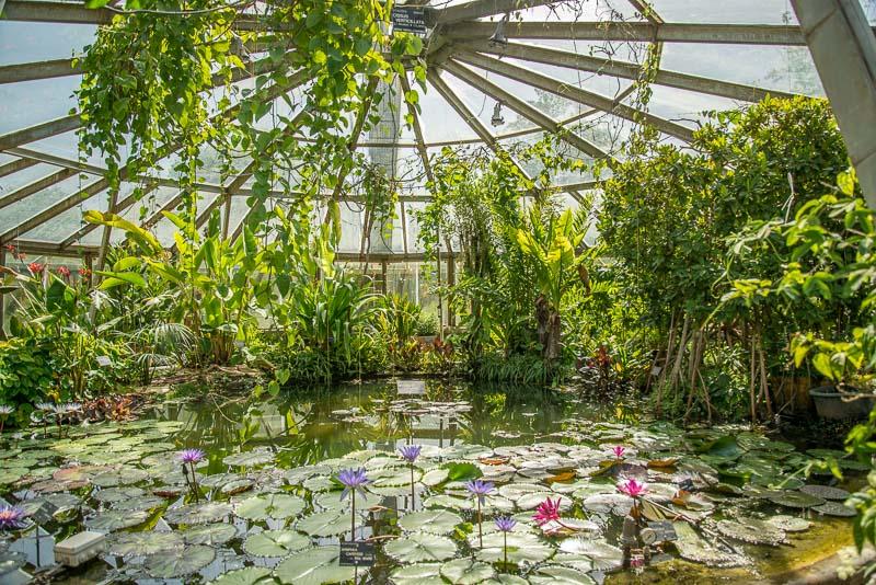 Le parc de la t te d or lyon - Petit jardin harrogate lyon ...