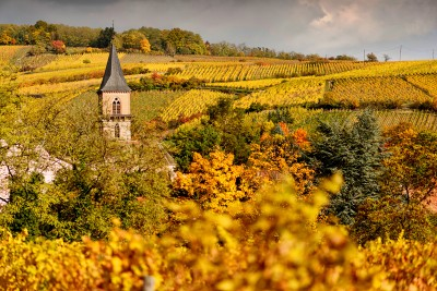 Alsace Ribeauvillé
