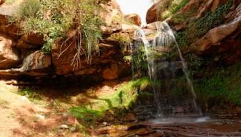 Randonnée dans la vallée de l'Ourika