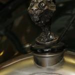 Lion Peugeot