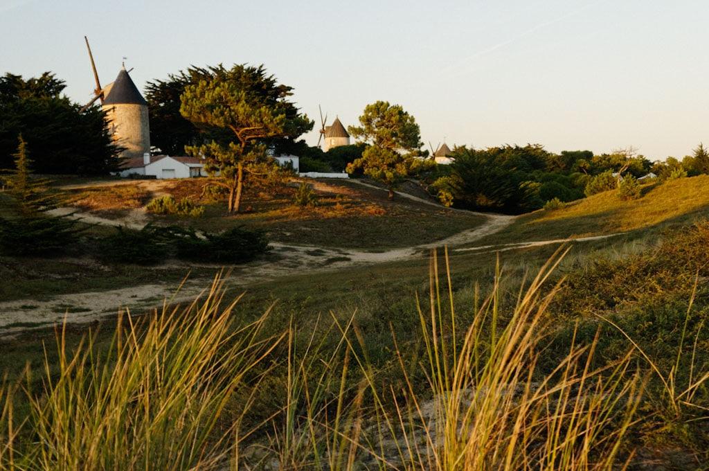 Les moulins de Noirmoutier
