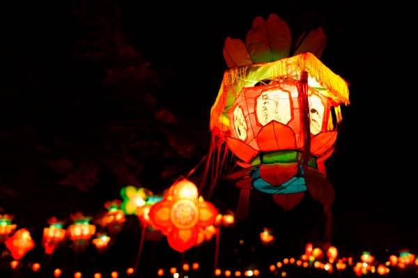 Fête des Lumières à Lyon: du Parc à Confluence