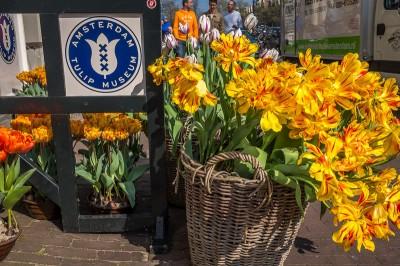 Musée de la Tulipe Amsterdam