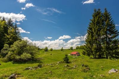 Randonnée Jura : Le Crêt de la Vigoureuse