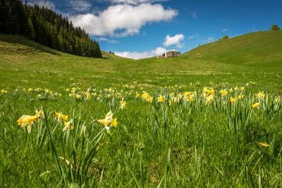 Randonnée Jura : Les 3 Combes