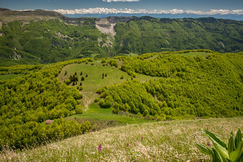 Randonnée Jura : Vue du Crêt de Chalam