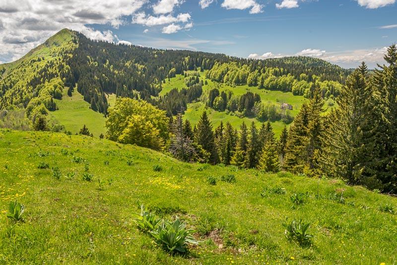 Randonnée Jura : Crêt de Chalam