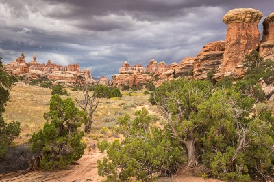 Canyonlands National Park, The Needles