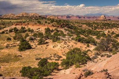 Canyonlands National Park : Aztec Butte trail