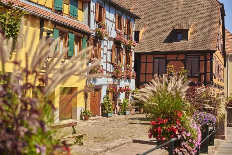 Ribeauvillé, étape sur la route des vins d'Alsace