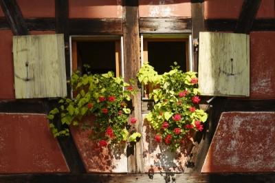 Alsace Riquewhir