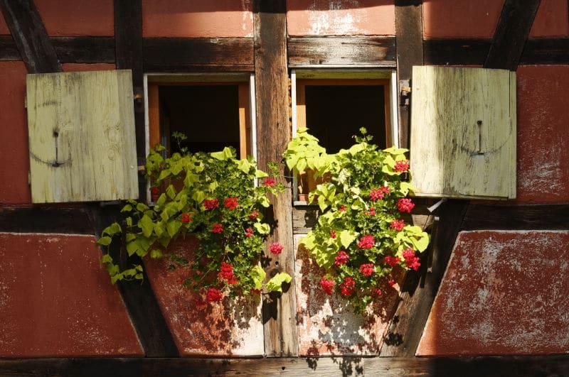 Week-end en Alsace: les incontournables