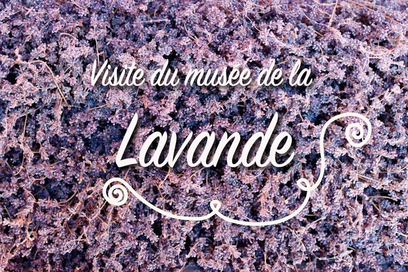 On a eu du nez en visitant le musée de la lavande en Provence !