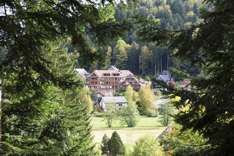 Forêt Noire : Hinterzarten