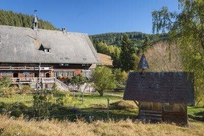 Randonnée en Forêt Noire : Sankt Blasien