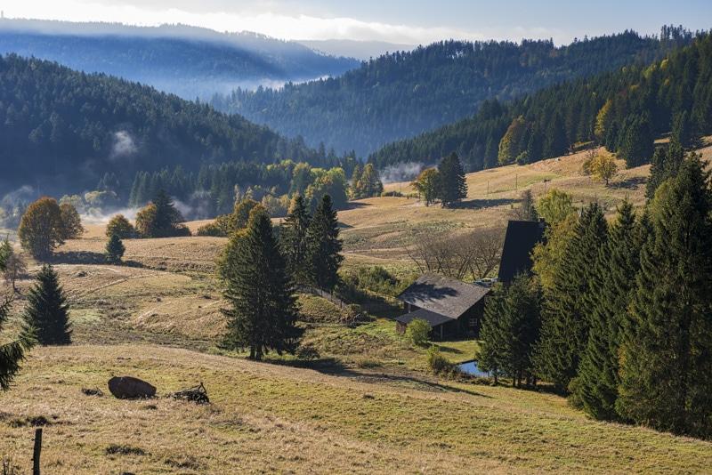 Randonnée en Forêt Noire : Sant Blasien
