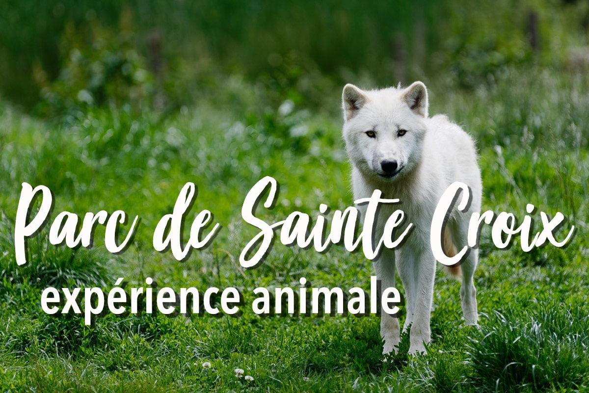 Visiter le Parc de Sainte-Croix en Lorraine