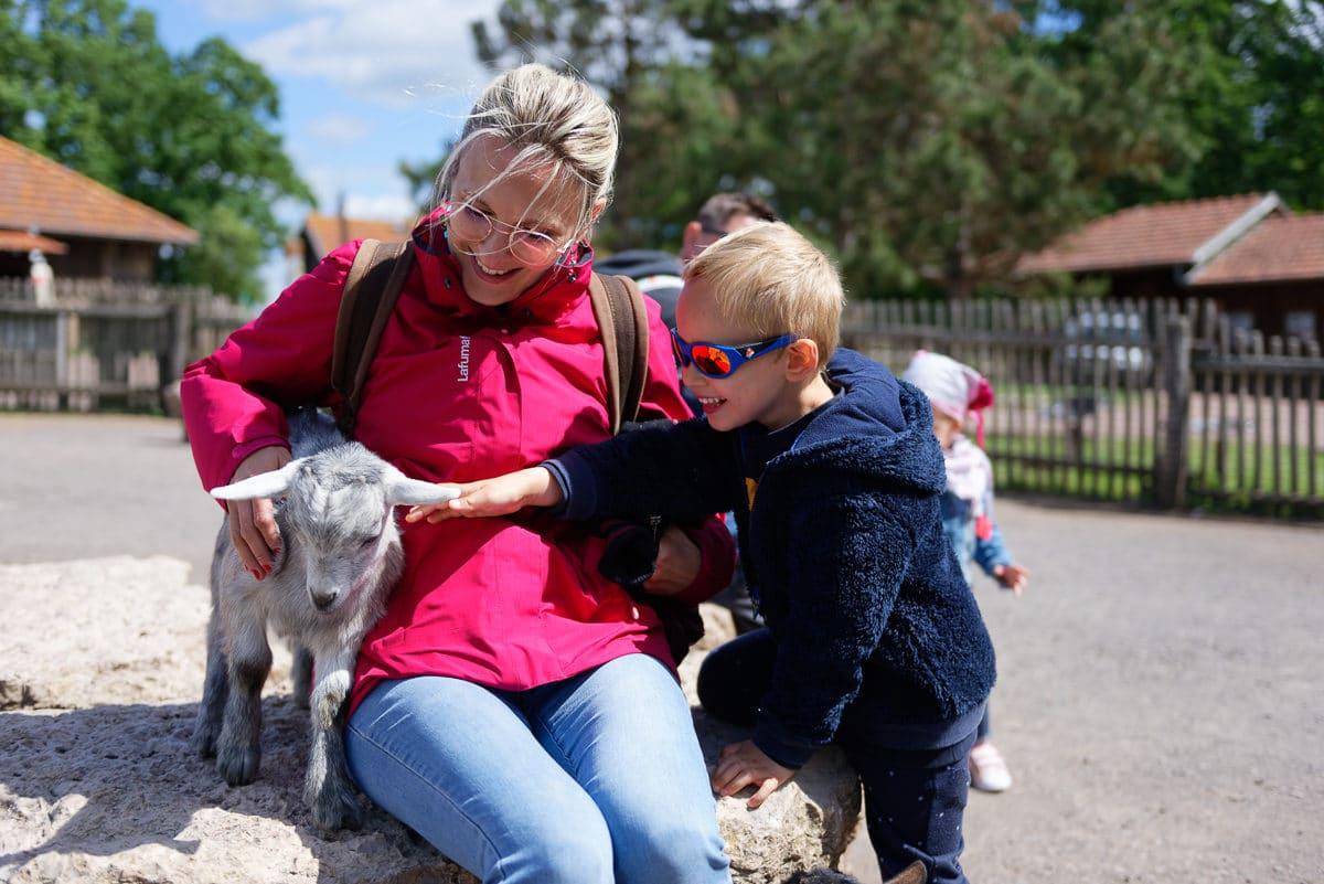 Parc de Sainte-Croix : visite à faire en famille