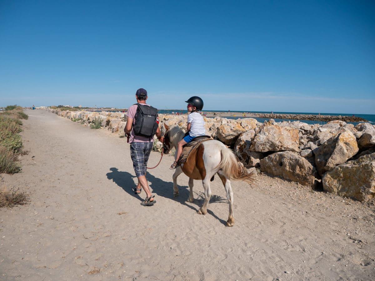 Balade à poney en Camargue